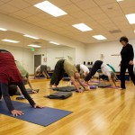 """Members of a Yoga for Seniors class in the """"downward dog"""" position"""