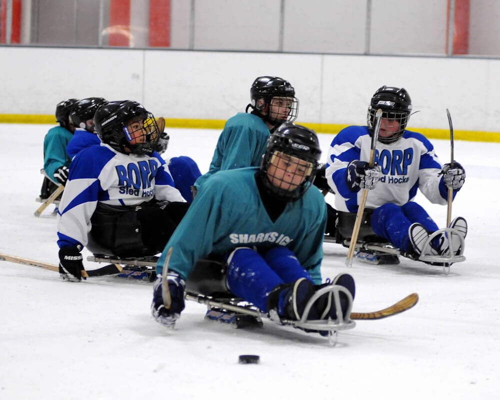 Youth sled hockey players wearing BORP jerseys and Sharks jerseys chase the puck