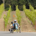 Two adaptive tandem cyclists ride in front of rows of grape vines