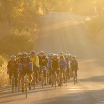 A pelaton of cyclists rides on a beautiful autumn morning