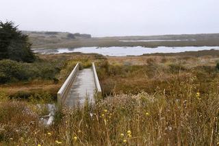 View from Bird Walk trail