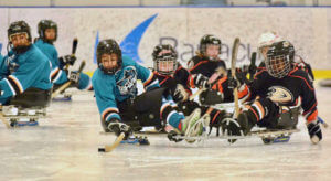 The Sharks Sled Hockey Team at the 2017 Disabled Hockey Festival
