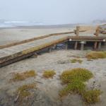 Stinson Beach Access Ramp