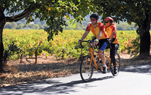 Revolution: tandem cyclists ride past vineyards