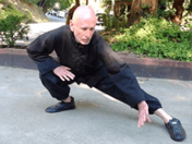 Try seated Tai Chi: pictured Ralph Somack, instructor