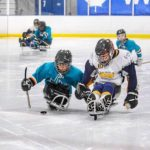 battling for the puck on the ice
