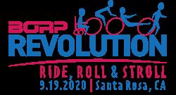 BORP Revolution 2020 logo